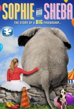 Постер фильма Софи (2010)