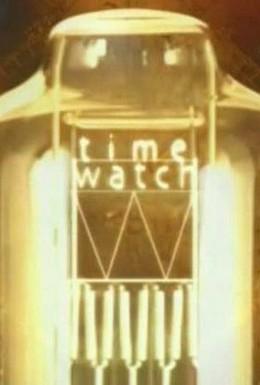 Постер фильма Шкала времени (2007)