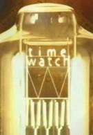 Шкала времени (2007)