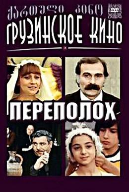 Постер фильма Переполох (1975)