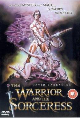 Постер фильма Воин и колдунья (1984)