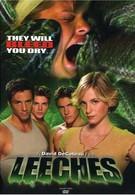 Пиявки (2003)