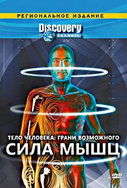 Постер фильма Тело человека. Грани возможного (2008)