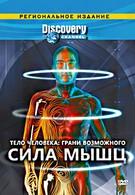 Тело человека. Грани возможного (2008)