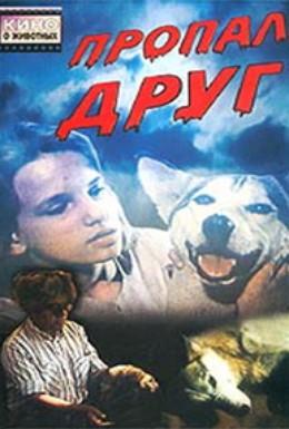 Постер фильма Пропал друг (1990)