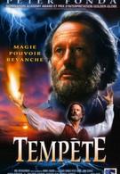 Вызывающий бурю (1998)