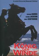 Быстрее ветра (1990)