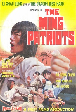 Постер фильма Месть патриотов (1976)