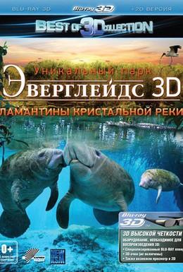 Постер фильма Эверглейдс 3D: Ламантины Кристальной реки (2012)