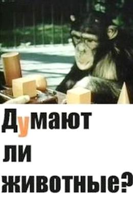 Постер фильма Думают ли животные? (1970)