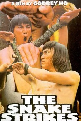 Постер фильма Змея наносит ответный удар (1981)