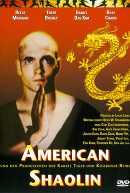 Постер фильма Американский Шаолинь (1991)