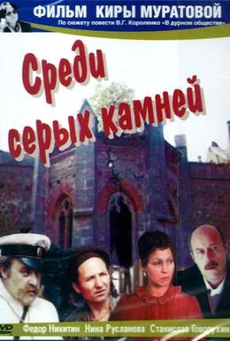 Постер фильма Среди серых камней (1983)