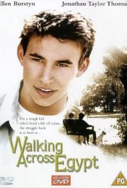 Постер фильма Прогулка по Египту (1999)