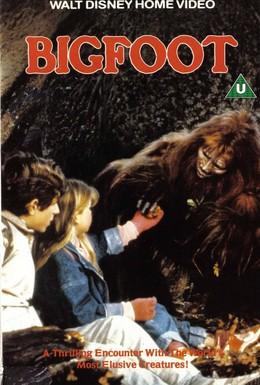 Постер фильма Снежный человек (1987)