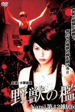 Постер фильма Бандитки в цепях (2007)