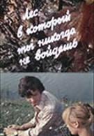 Лес, в который ты никогда не войдешь (1973)