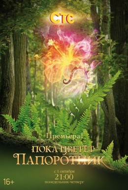 Постер фильма Пока цветет папоротник (2012)