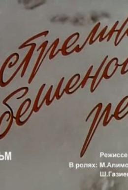 Постер фильма В стремнине бешеной реки (1980)