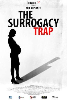 Постер фильма Ловушка суррогатного материнства (2013)