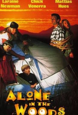 Постер фильма Один в лесу (1996)