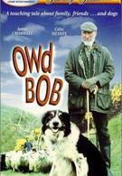 Старина Боб (1998)