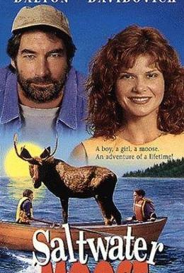 Постер фильма Лосенок (1996)