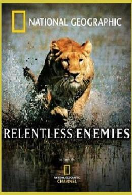 Постер фильма Непримиримые противники (2006)