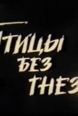 Постер фильма Птицы без гнезд (1996)