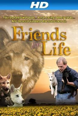 Постер фильма Друзья навек (2008)
