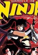 Гнев ниндзя (1989)