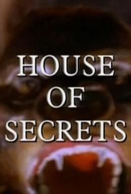 Постер фильма Дом с секретом (1993)