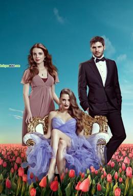 Постер фильма Пора тюльпанов (2010)