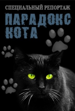Постер фильма Парадокс кота (2013)