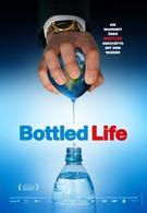 Жизнь в бутылке (2012)