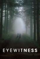 Свидетели (2016)