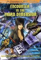 Встречи в третьем измерении (1999)