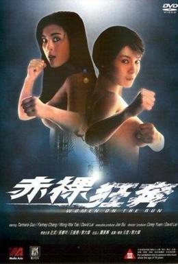 Постер фильма Женщины в бегах (1993)