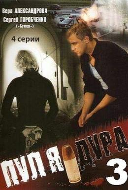 Постер фильма Пуля-дура 3: Агент для наследницы (2009)