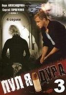 Пуля-дура 3: Агент для наследницы (2009)