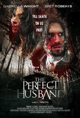 Постер фильма Идеальный муж (2014)