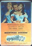 Округ Рэйнтри (1957)