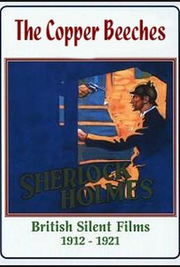 Постер фильма Медные буки (1912)
