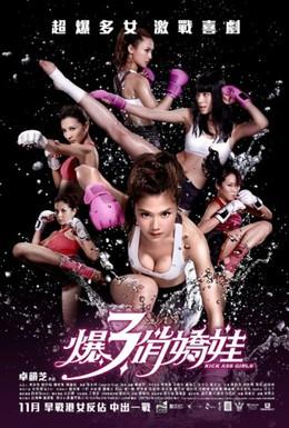 Постер фильма Боевые девчонки (2013)