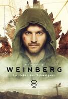 Вайнберг (2015)