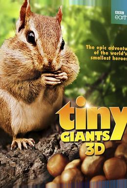Постер фильма Маленькие гиганты (2014)