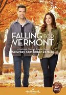 Влюбиться в Вермонт (2017)