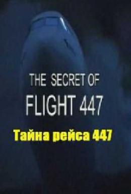 Постер фильма Тайна рейса 447 (2010)