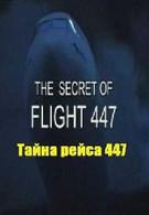 Тайна рейса 447 (2010)