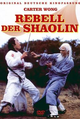 Постер фильма Предатель из Шаолиня (1977)